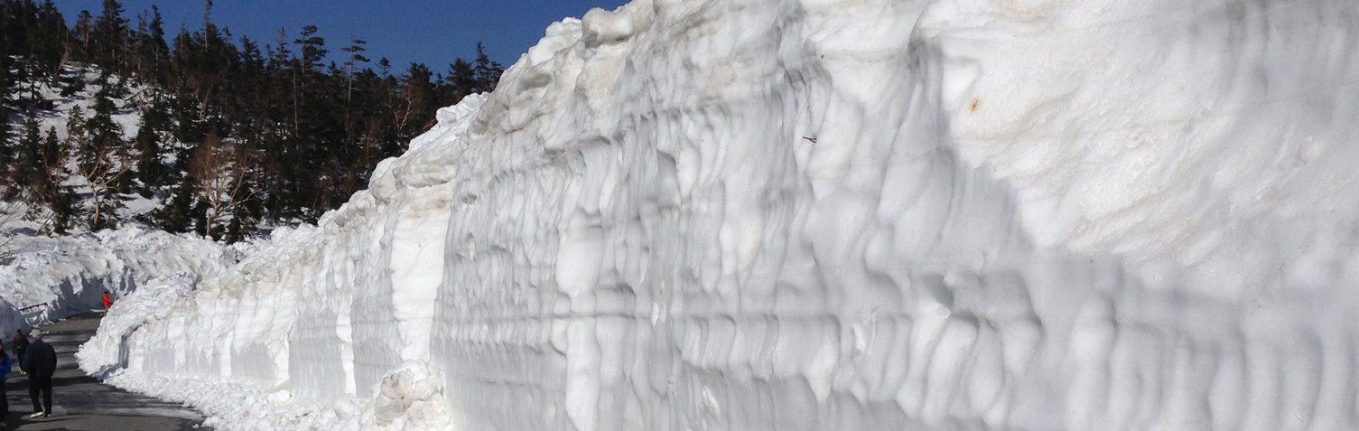 地方の一風景…雪の小道